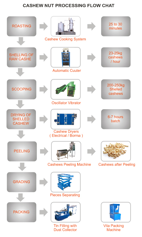 Raw Cashew Nuts Processing Flow Chat